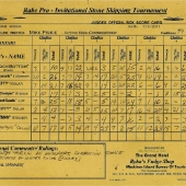 2011 Professional Division Score Card